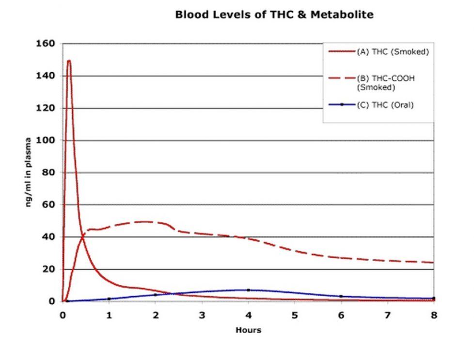 Decay in blood levels of THC and metabolites over time