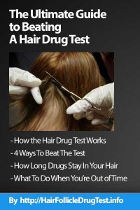 UltimateGuideToBeatingTheHairDrugTest-cover-blue