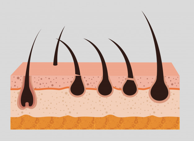 There are many ways you can fail your hair follicle drug test, but only a few that might work